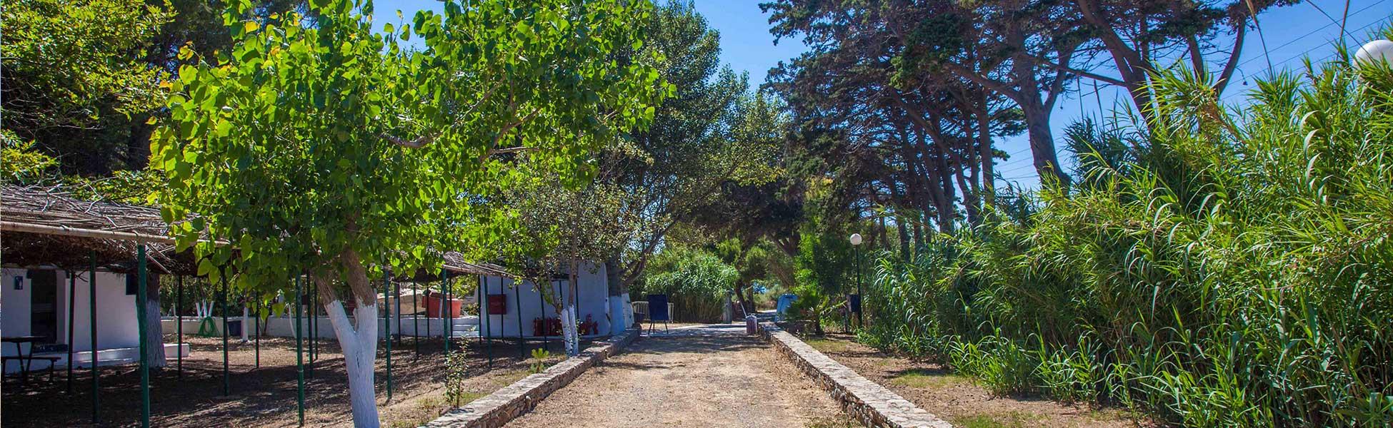 Facilities-Municipal-Camping-Katapola-Amorgos-Cyclades-Greece